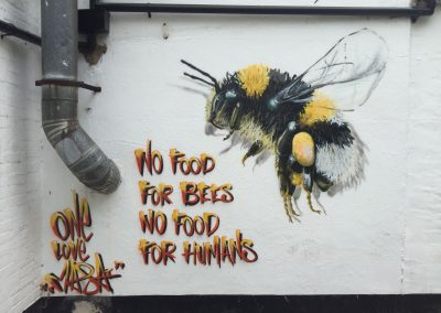 Bumble Bee, Taunton