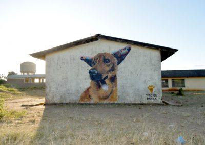 Dog, Malawi