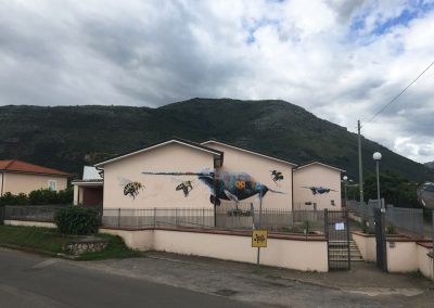 Narwhale, Italy