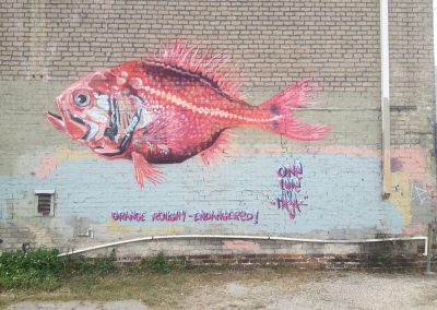 Orange Roughy, New Orleans