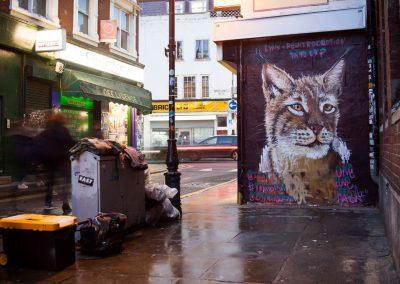 Lynx, London