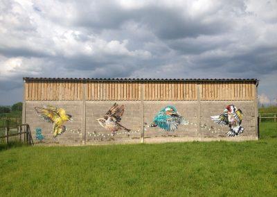 Birds, Suffolk