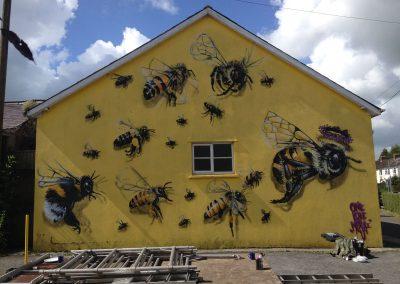 Honey Bee, Devon