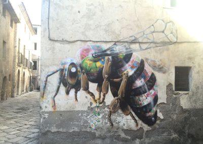 Honey Bee, Italy