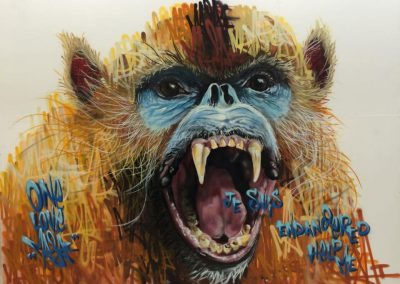Snub Nosed Monkey, Paris