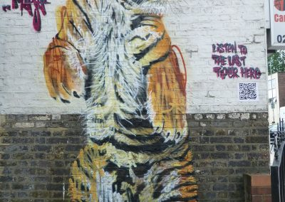 Tiger, London